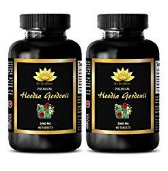 Appetite Suppressant With Energy – HOODIA GORDONII 2000MG – Hoodia Pills – 2 Bottle (120 Tablets)