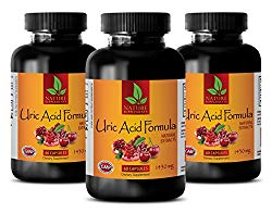 Brain Memory Pills – URIC Acid Formula – Natural EXTRACTS – Green Tea Quality – 3 Bottles (180 Capsules)