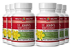 ST JOHN'S WART HERB EXTRACT With Siberian Eleutherococcus and Gingkgo Biloba – Energy booster – 6 Bottles 360 Capsules